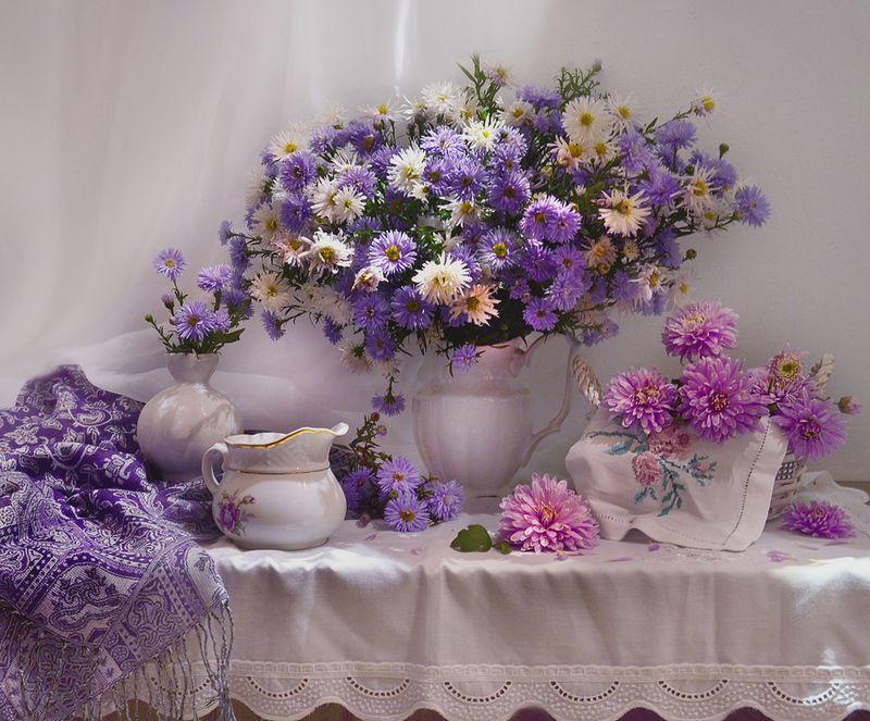 still life,натюрморт, хризантемы, фото натюрморт, фарфор, осень, октябрь, настроение, астры, цветы, ...цветы осенние последние...photo preview