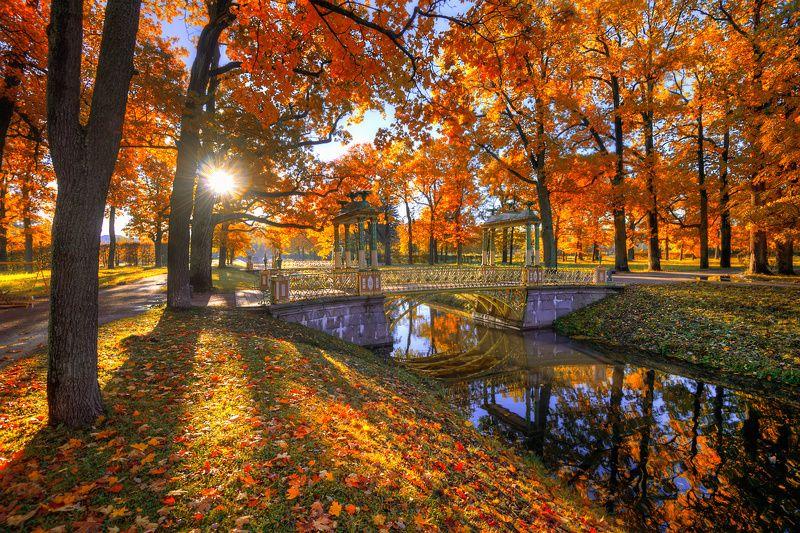 Царское село. осень...photo preview