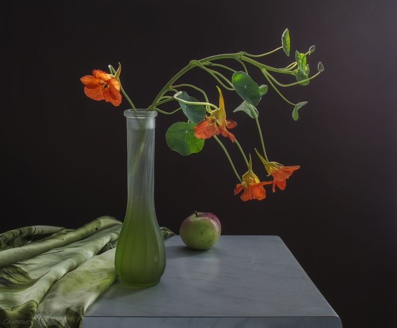 натюрморт,ветка,букет,ваза,свет Изящная настурцияphoto preview