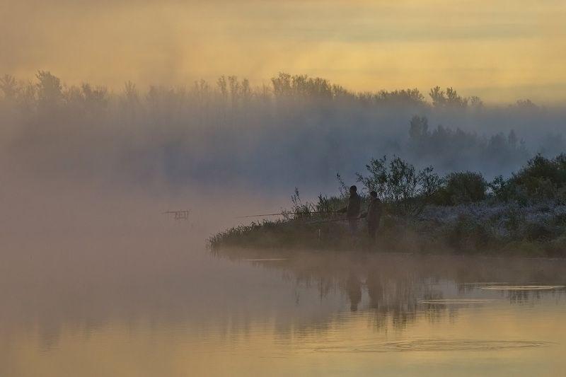 утро, рыбалка, туман, природа, архангельское Закинув лески вдали...photo preview