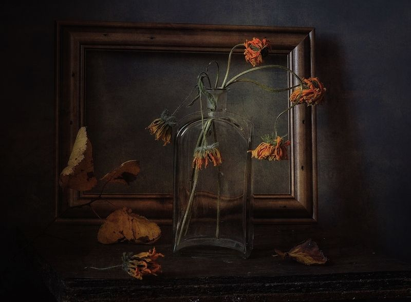 натюрморт,осень,увядание магия увядания...photo preview
