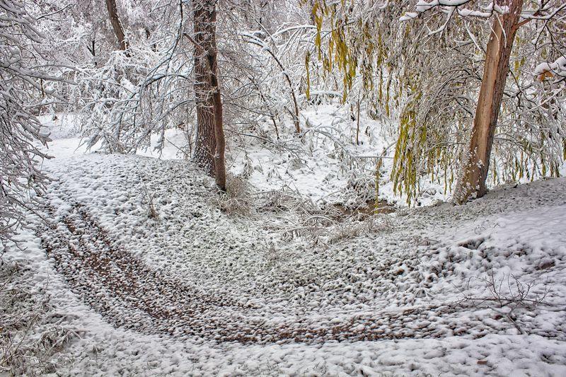 кыргызстан, осень На границе сезоновphoto preview