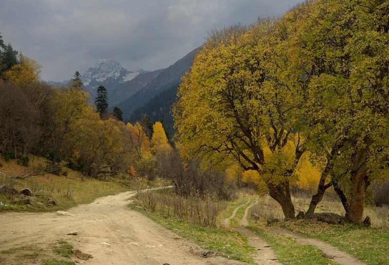 горы осень архыз дорога Осеняя дорогаphoto preview
