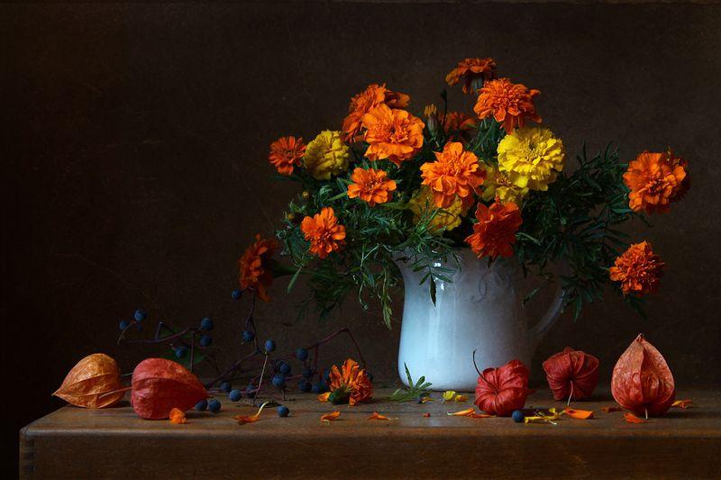 натюрморт, цветы, бархатцы, физалис, девичий виноград С бархатцамиphoto preview