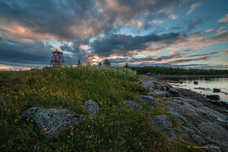кольский, заполярье, север, ночь, полярный день,умба, белое море, терский берег,лето Лето на севере.photo preview