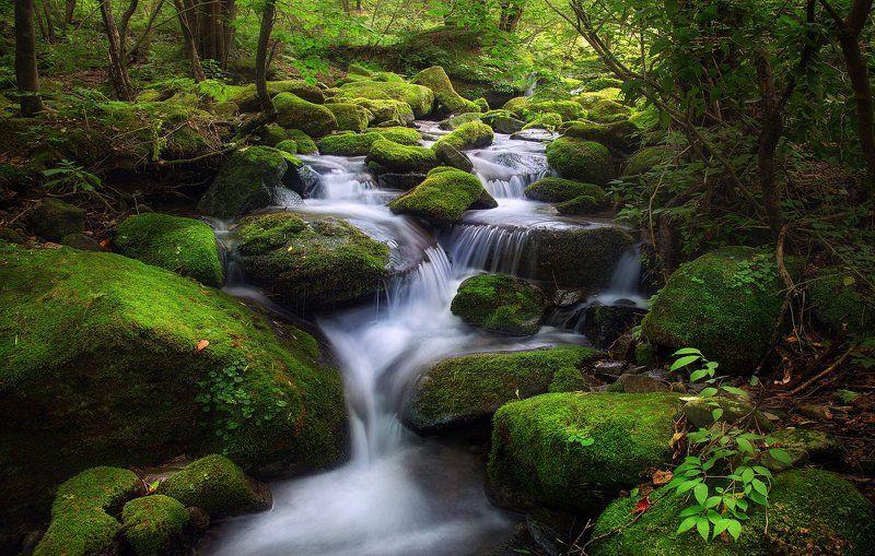Moss Valley waterfallphoto preview