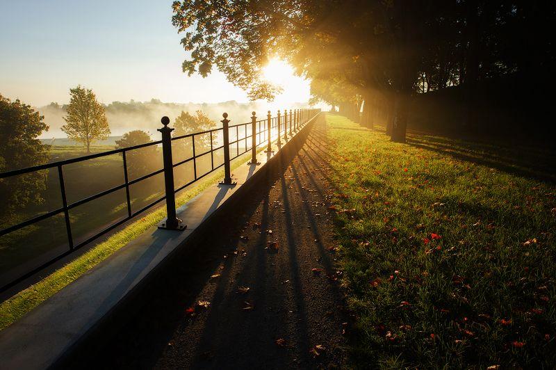 осень, утро Золото осениphoto preview