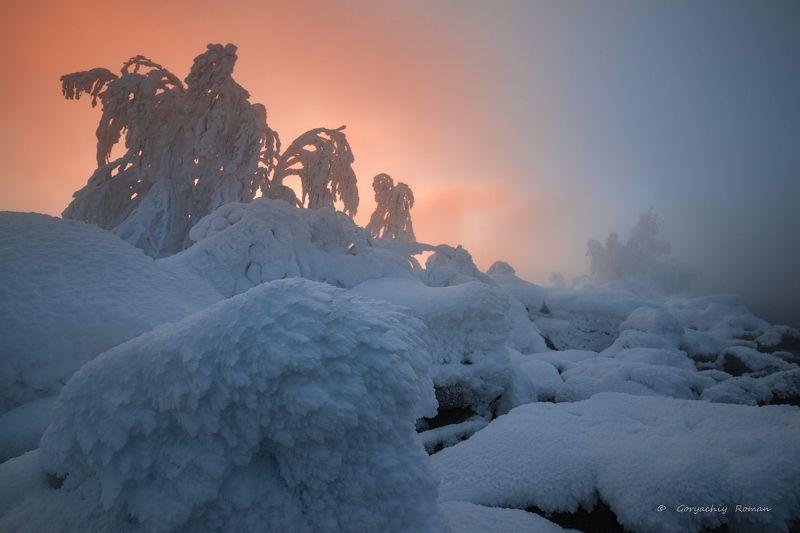 север, кольский, хибины, заполярье, имандра, молочная губа, зима ***photo preview