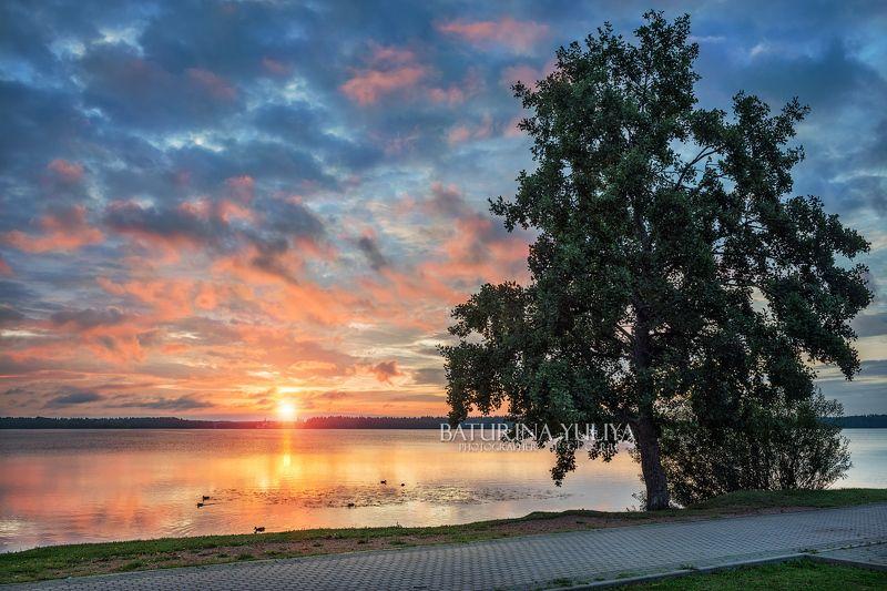 валдай, озеро, рассвет, пейзаж Рассвет на Валдаеphoto preview