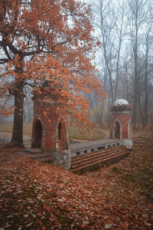 пушкин, царское село, осень, листопад, октябрь, туман Красный каскадphoto preview