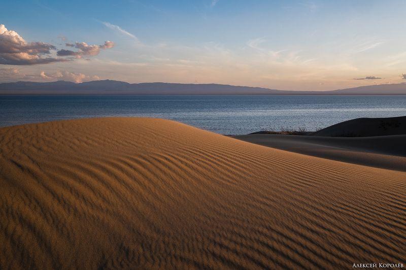монголия, закат, пустыня, песок, озеро, природа, пейзаж, лето, mongolia, sunset, desert, sand, lake, nature, landscape, summer Золото Монголии 2photo preview