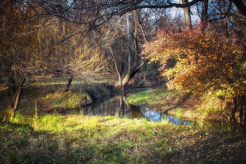 осень Бабье летоphoto preview