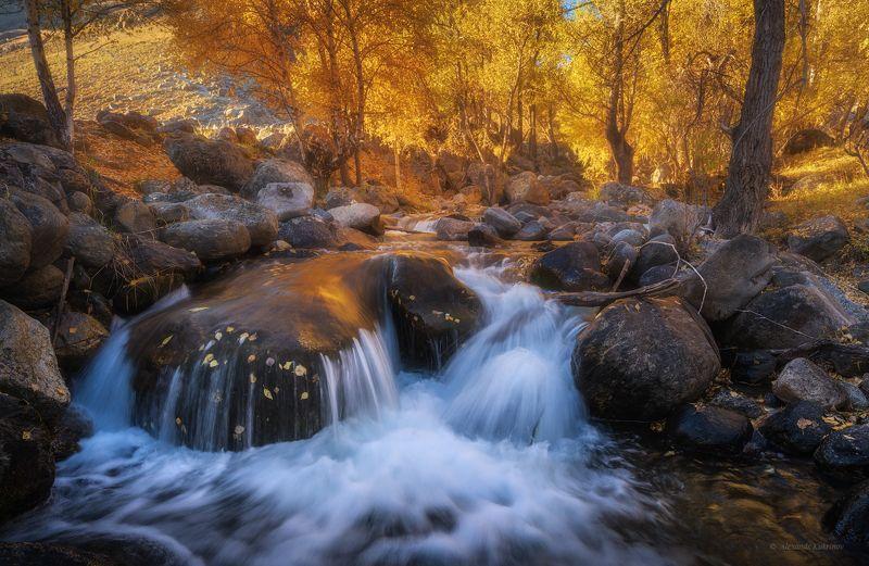 пейзаж, алтай, чулышман Алтайская осень...photo preview