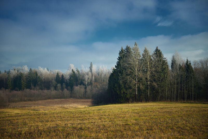 Зима все ближе...photo preview