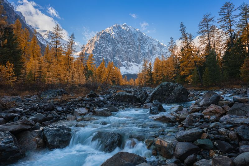 алтай, актру, осень, река, горы Золотой Актруphoto preview
