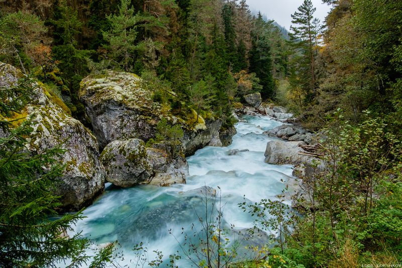 кавказ,домбай,горы,осень,лес,пейзаж,природа,камни,ущелье,гоначхир,река, Гоначхирphoto preview