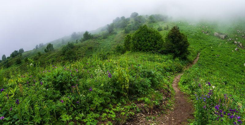 Лесною тропой в туманных горахphoto preview