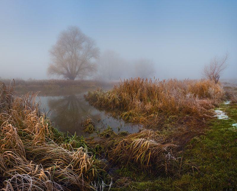 осень, иней, туман, утро, речка, природа, панорама, холод, autumn, morning, cold, misty, fog, trees, water, river, nature, landspace, foggy, colors, panorama, frost, fall, deep, beautiful, mood Deep autumnphoto preview