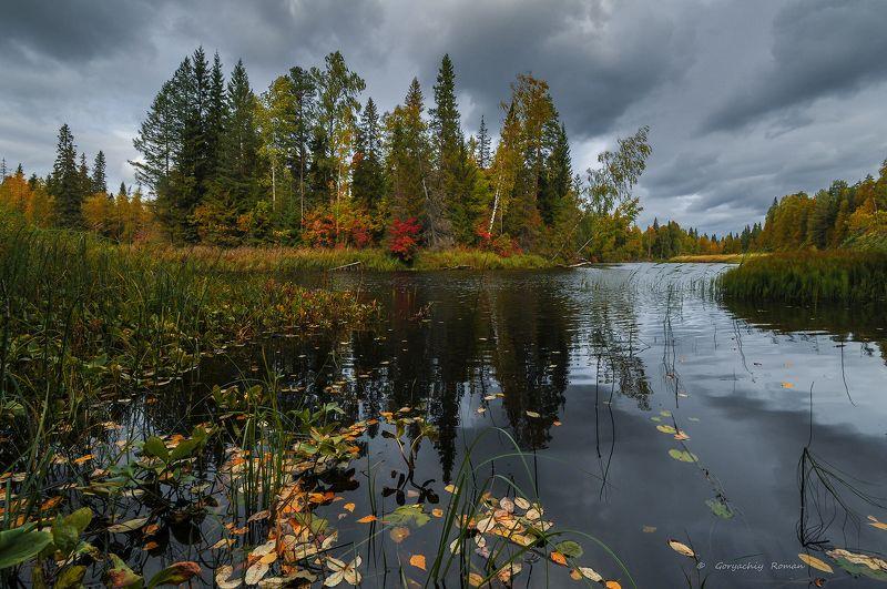 великий двор,вологодчина,кема,север,осень, ***photo preview