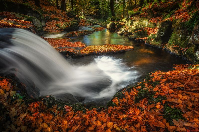 autumn,ireland,wicklow,colours,landscapes, Irish autumnphoto preview