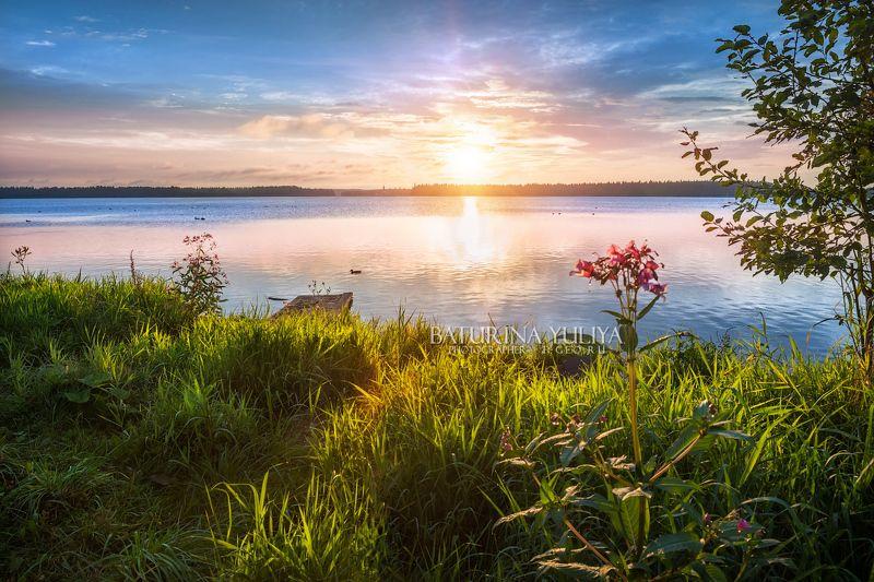 валдай, озеро, пейзаж Утреннее солнце Валдаяphoto preview