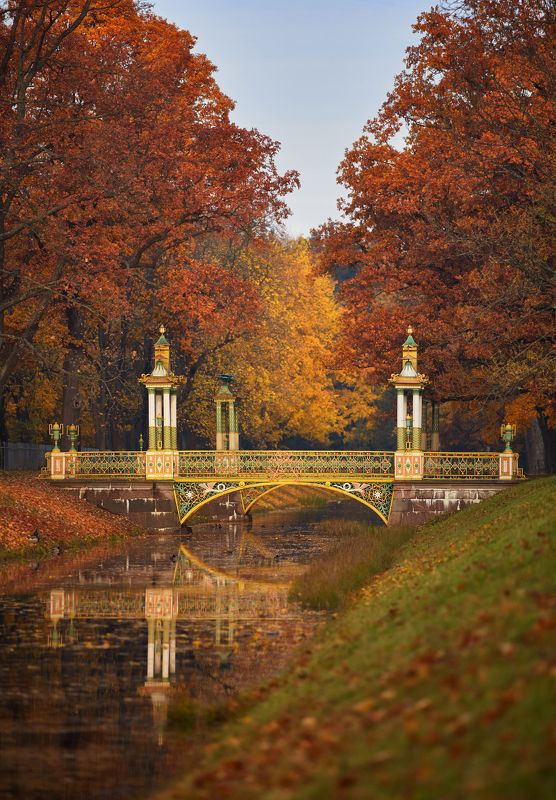 пушкин, царское село, парк, осень, листопад, октябрь Великолепие осенних красокphoto preview