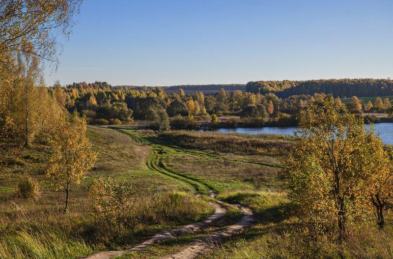 nevant60, пейзаж, красота, лес, осень Лесными тропамиphoto preview