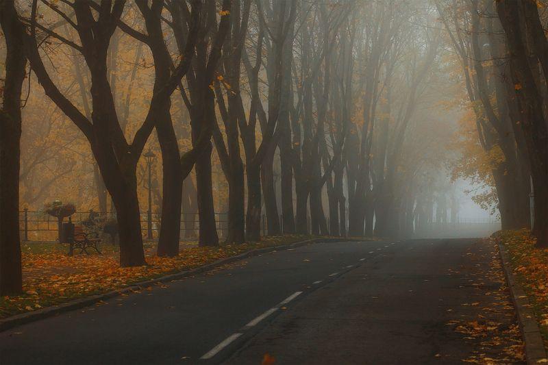 осень, утро, нарва Осеньphoto preview