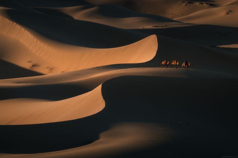 Монголия Линии Гобиphoto preview