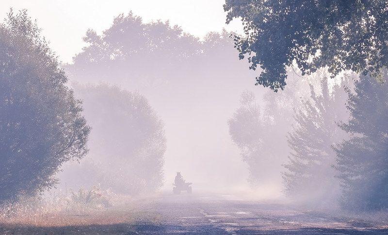 Сколько чудес за туманами кроетсяphoto preview