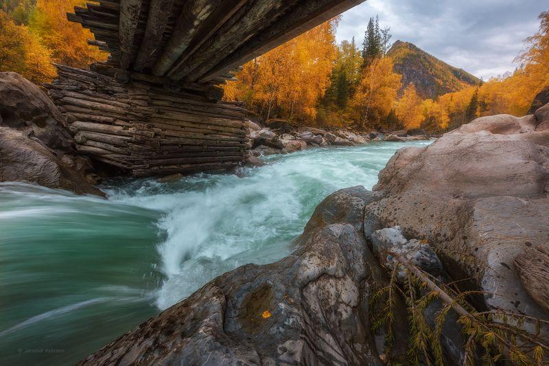 алтай, осень, чуя, пейзаж Осенне-пасмурное Бегемотово царство...photo preview