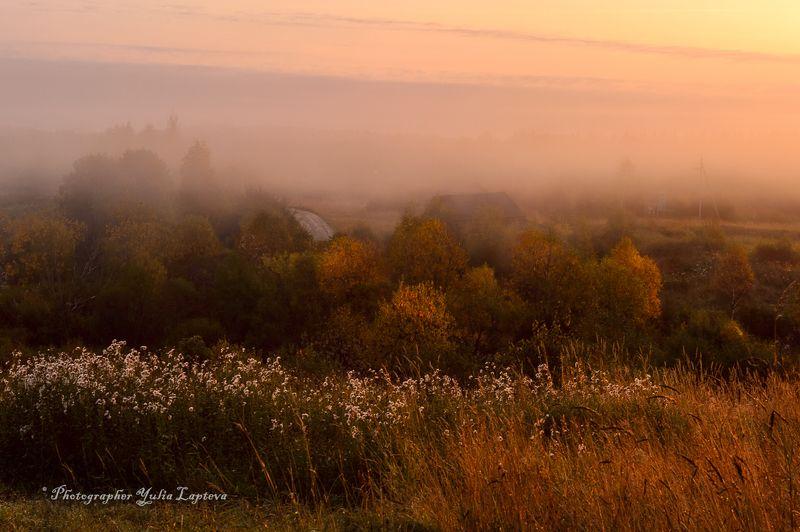 пейзаж,природа,осень,сентябрь,россия,утро,расвет,ленинградская область \
