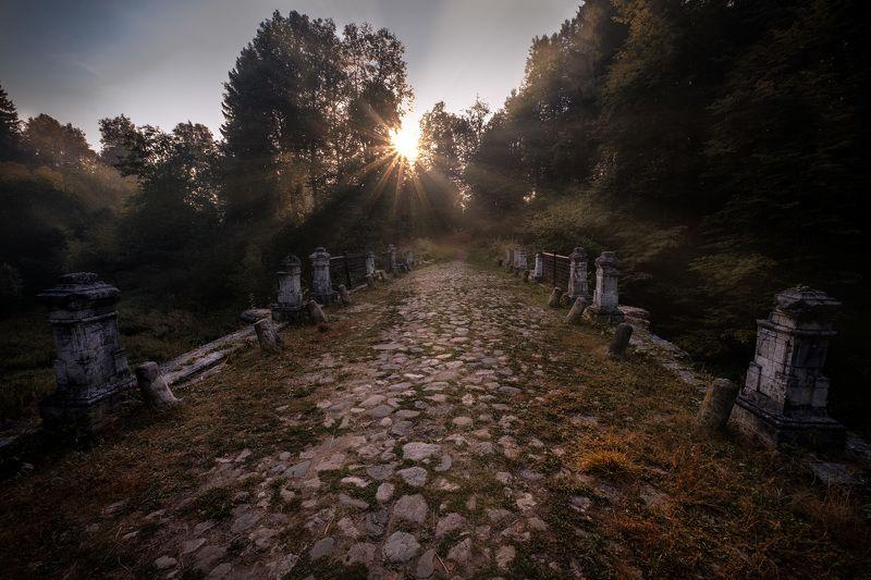 мост, чертов, середниково, лес, солнце, утро Чертов мостphoto preview