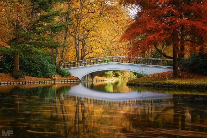 Bridge to Autumnphoto preview