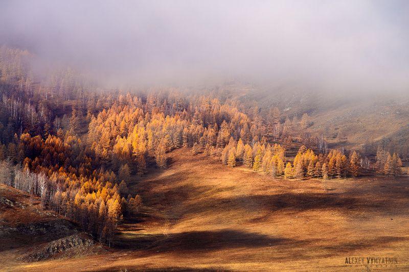алтай, сибирь, горы, altay, siberia, mountains ***photo preview