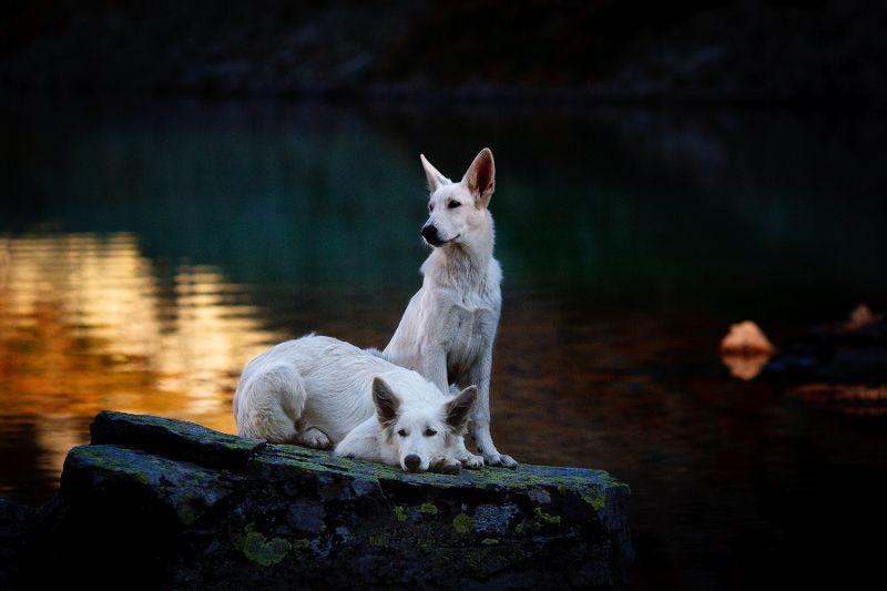 бшо На Дуккинских озёрахphoto preview