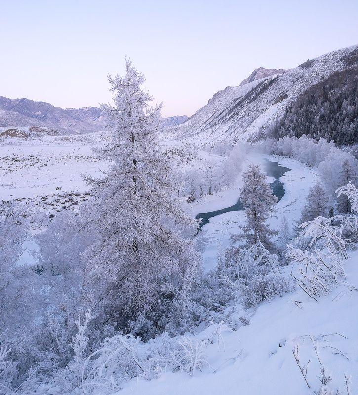 ...Январские морозы...photo preview
