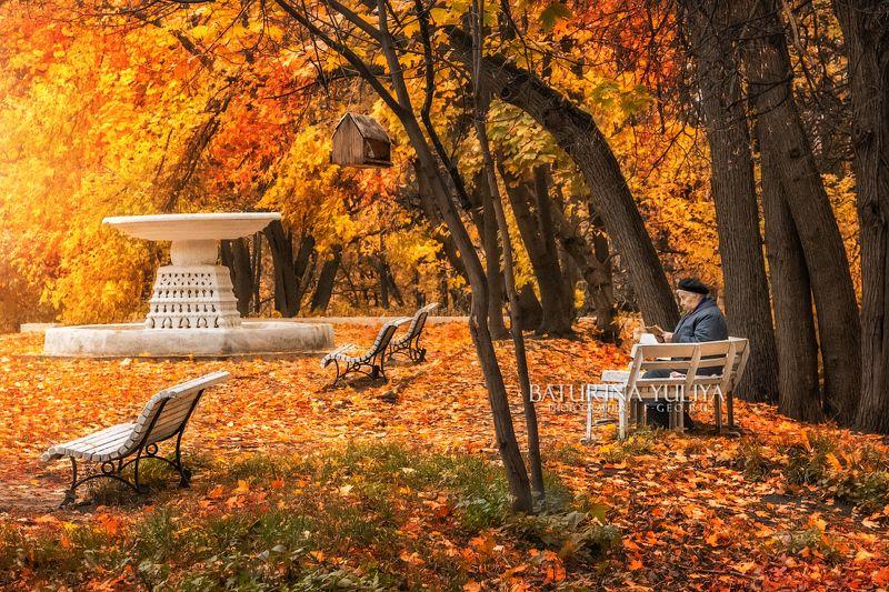 москва, нескучный сад, осень В Нескучном скучноphoto preview
