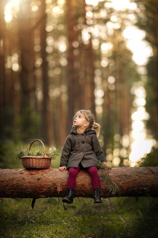 little girl magical forest bokeh trees fallen tree sunlight dranikowski Little girl in a magical forestphoto preview