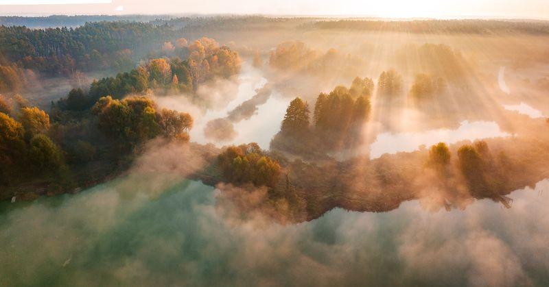 туман, рассвет, лес, река Флерphoto preview