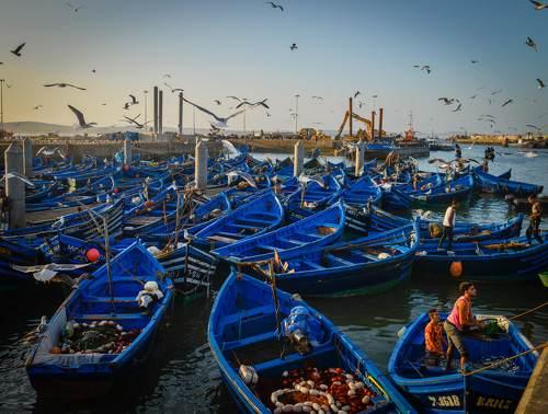 Рыбацкий порт в Эс- Сувейре . Марокко.