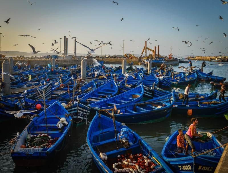 Рыбацкий порт в Эс- Сувейре . Марокко.photo preview