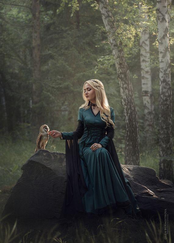 фото с совой, совы, лес, фэнтези, сказочная фотосессия Совиные историиphoto preview