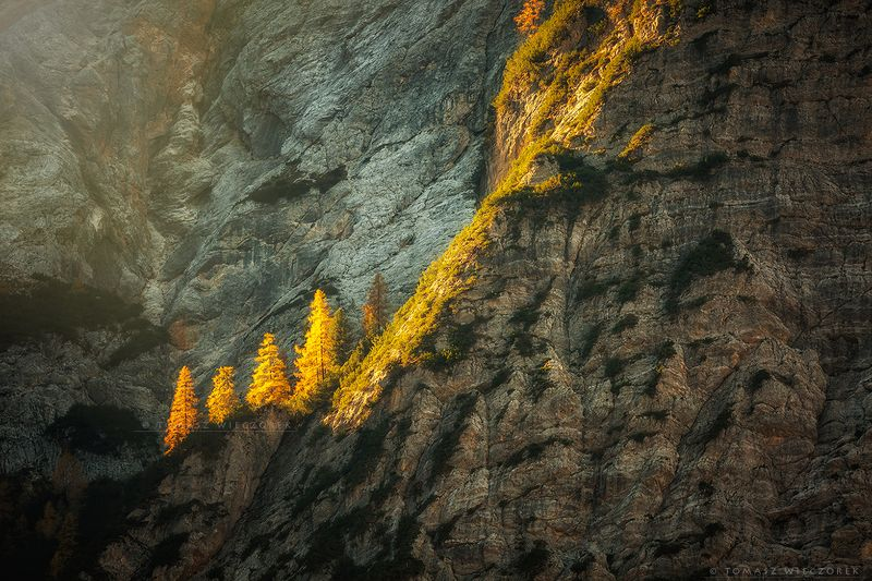 dolomites, dolomiti, italy, italia, amore, lago, braies, alps, landscape, light, rocks, mountains, shadows, beautiful, trees Painted with lightphoto preview