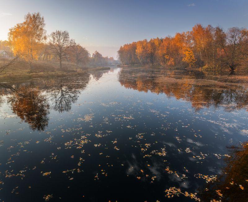 пейзаж, осень, природа Золотая осеньphoto preview