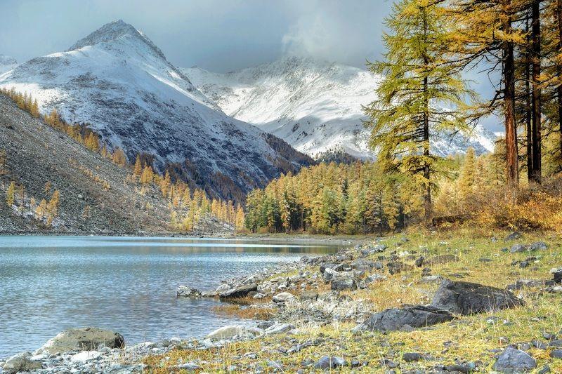 алтай,осень осенняя Шавлаphoto preview
