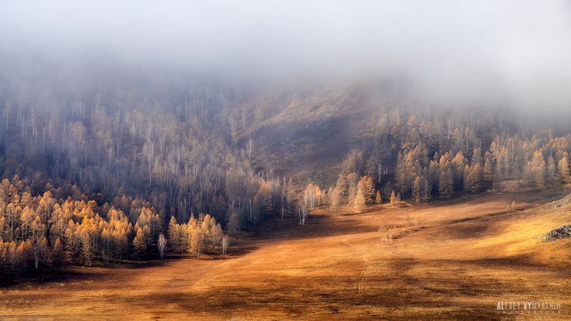 Осенний Алтайphoto preview