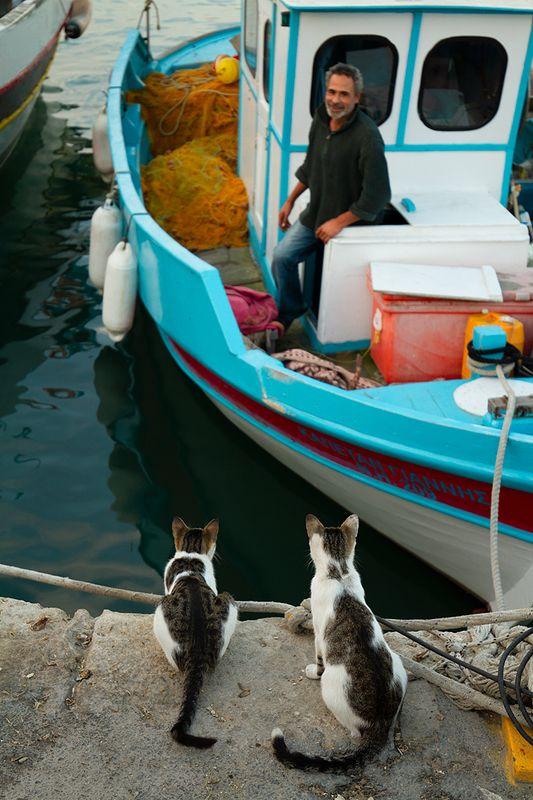 рыбак рыбака видит издалека :)photo preview