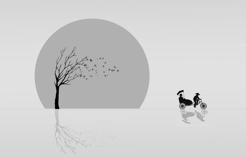 осень, природа, дерево, солнце, рикша Рикшаphoto preview