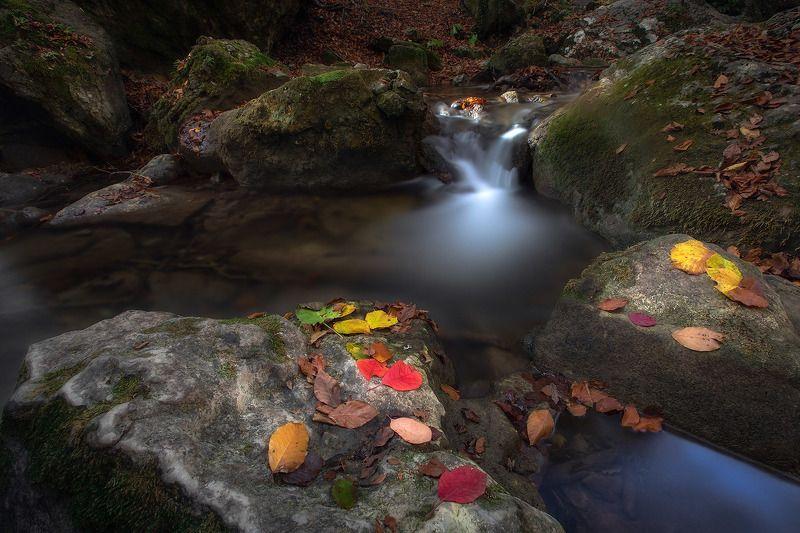 Осенний Джур-джурphoto preview